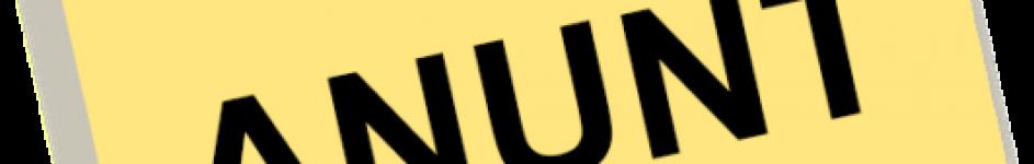 iamgine-anunt